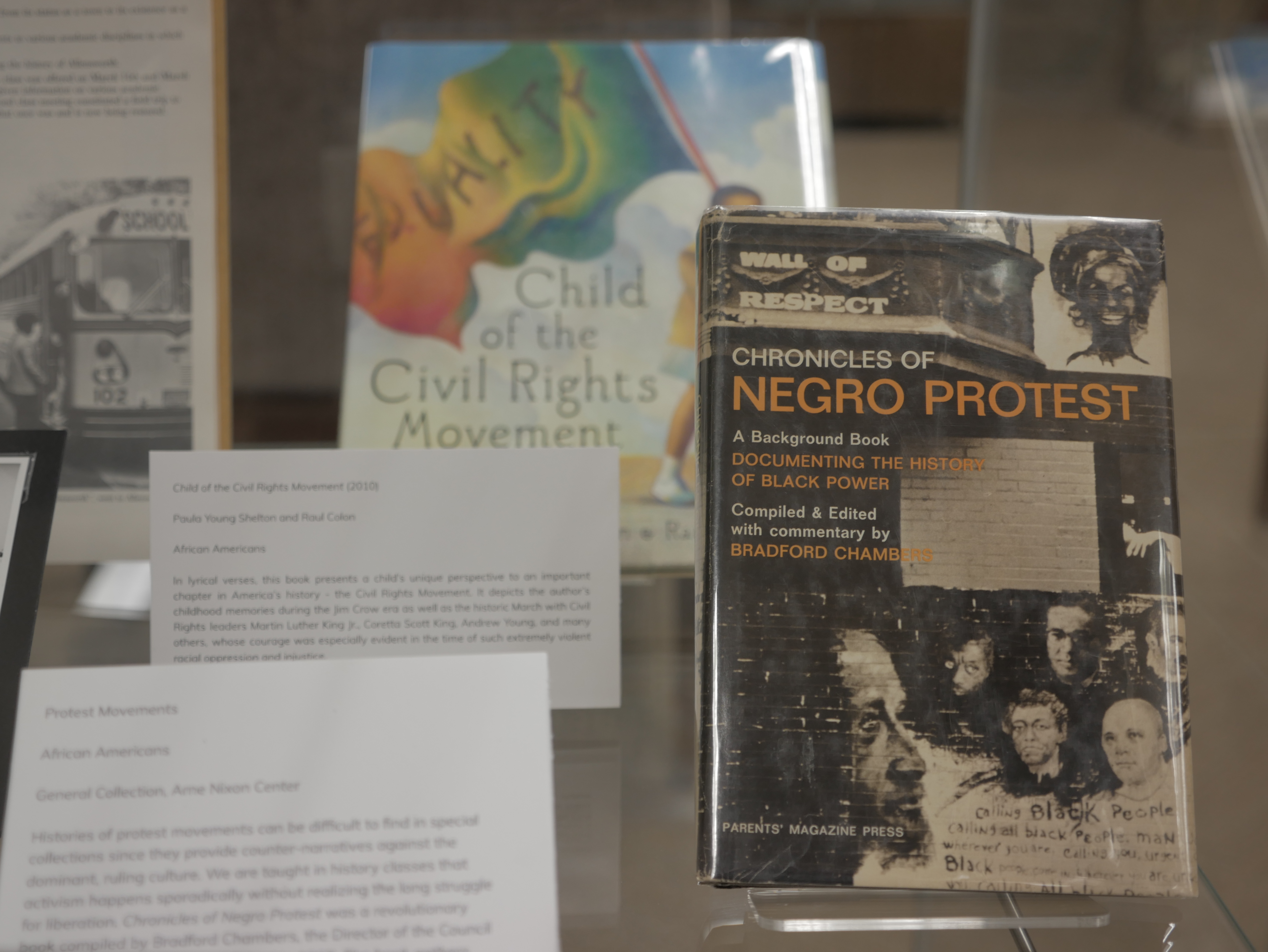 Chronicles of Negro Protest and Child of the Civil Rights Movement